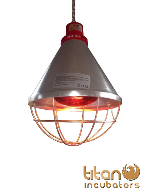 Heating Light Bulb : Poultry heat lamp with hi low setting w red bulb