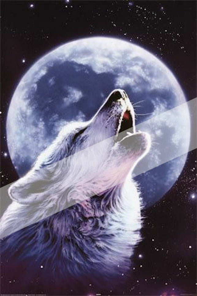 HOWLING WOLF MOON ~ EDIBLE Rice Paper Decoration Cake ...