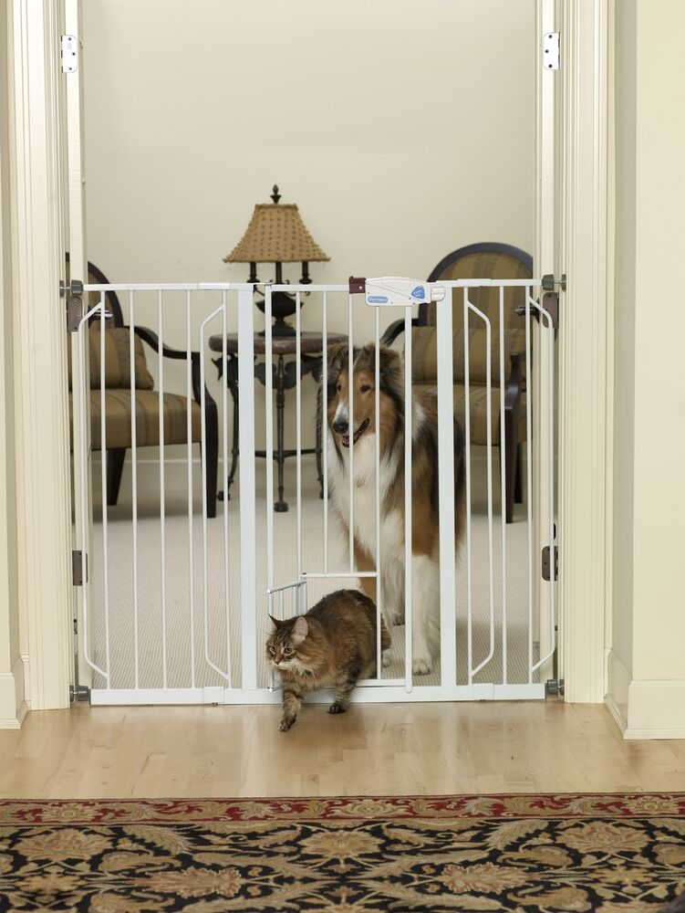 Carlson Extra Tall Pet Gate With Pet Door 0942pw For Dog