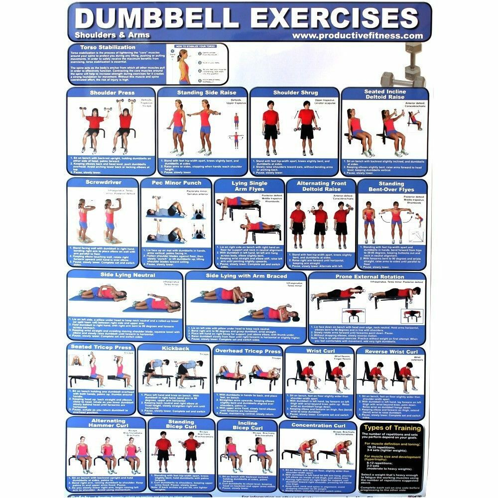 Productive Fitness Poster Series - Dumbbell Exercises ...