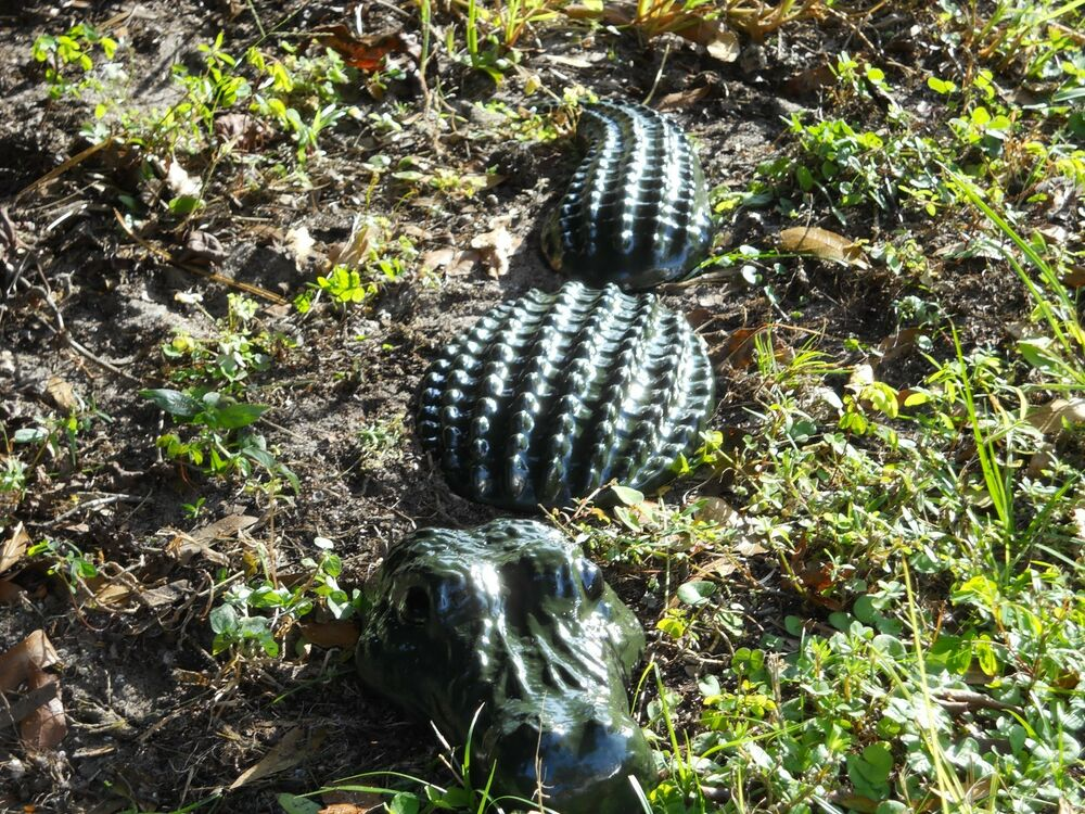 3 pc alligator statue 24 inch yard art garden decor