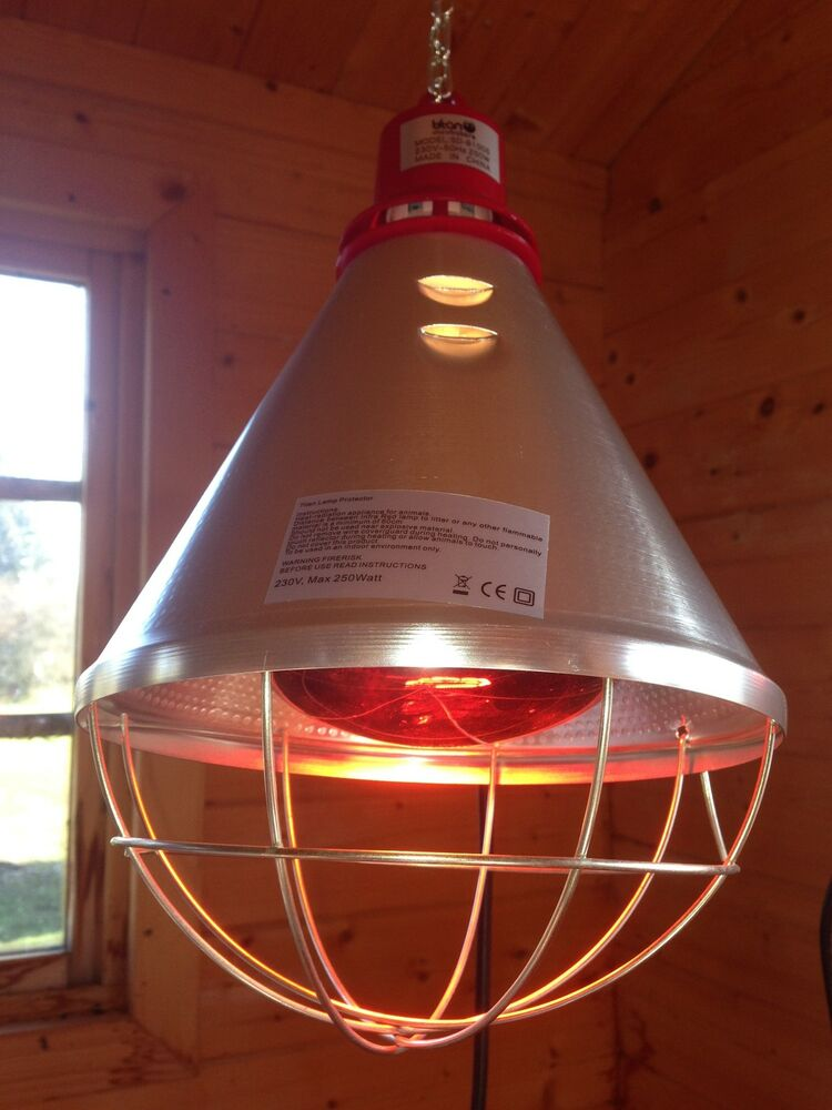 kennel heat lamp hi low setting 250w red bulb included puppy dog. Black Bedroom Furniture Sets. Home Design Ideas