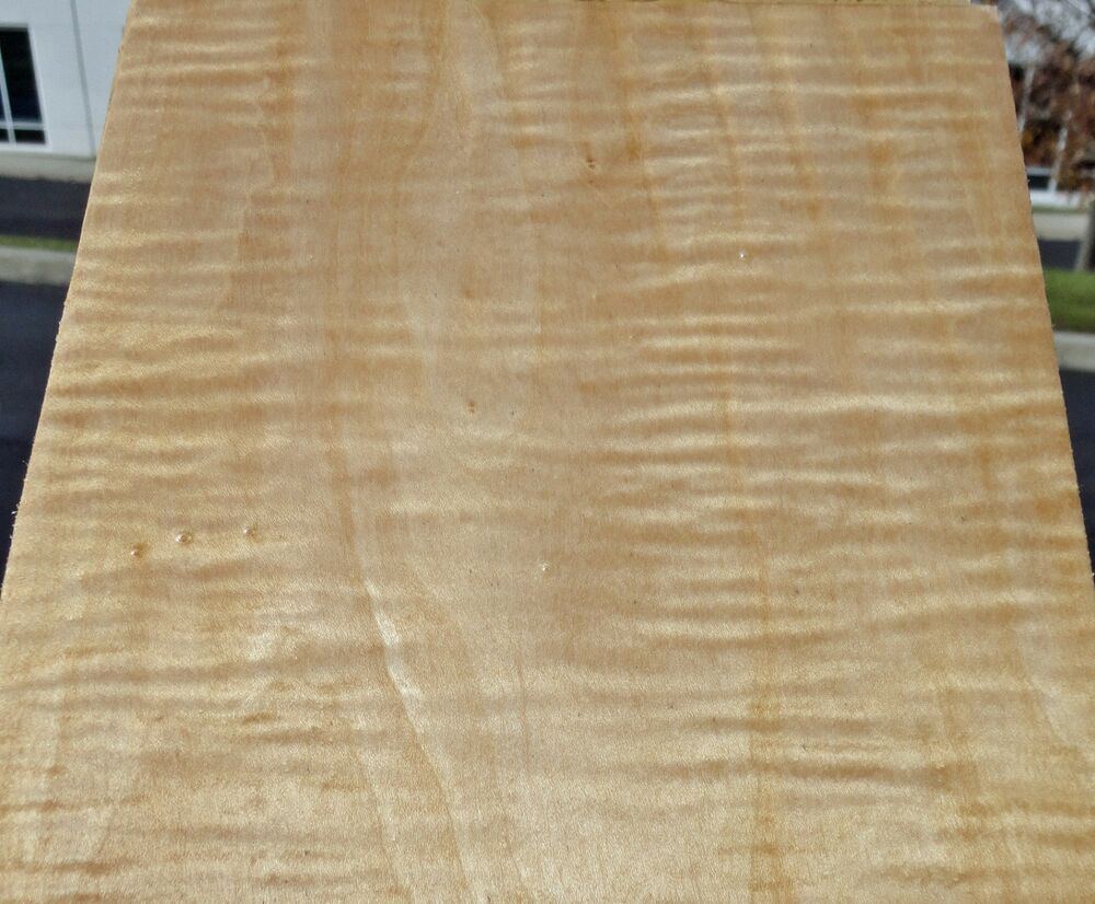 "Curly Figured Tiger Maple Wood Veneer 6"" 5"" 3"" x 34"" No ..."