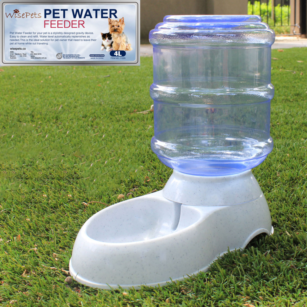 Best Water Feeder For Cats