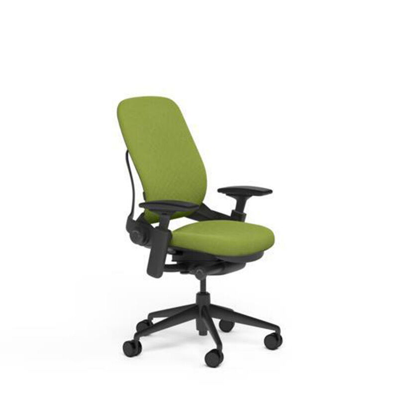 Steelcase Leap Adjustable Desk Chair V2 Buzz2 Meadow Green Fabric Black Bas