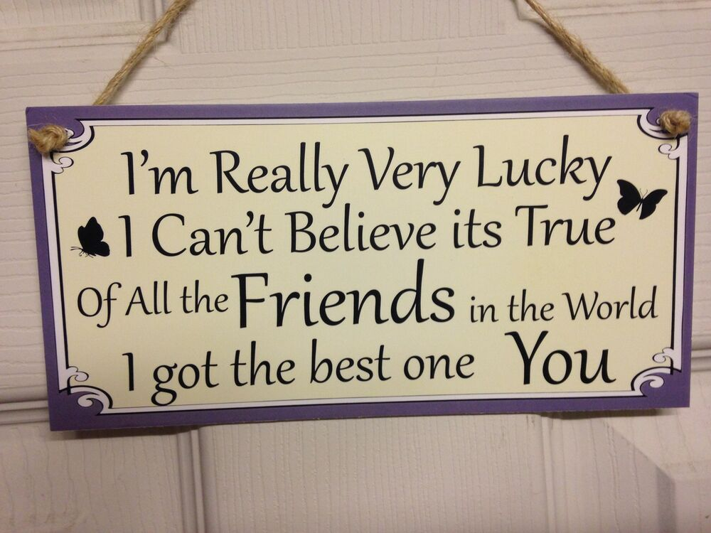 Friend Quote Plaque : Friend friendship plaque sign funny gift lucky best
