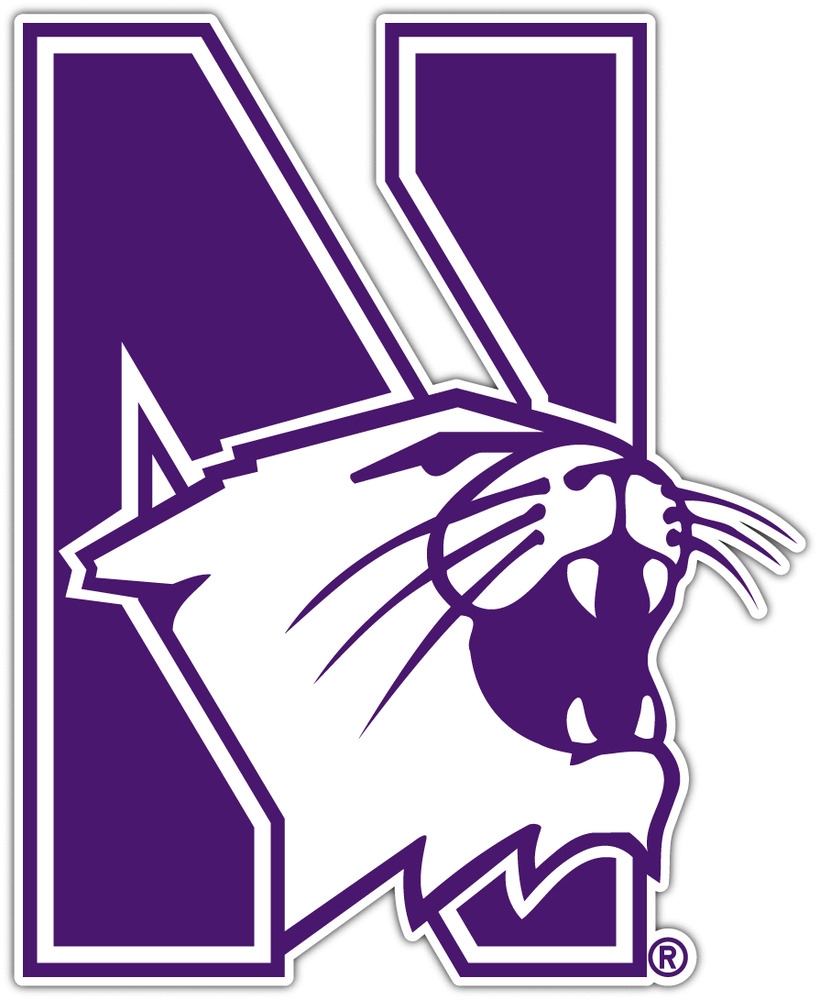 Northwestern Wildcats Ncaa Vinyl Car Bumper Window Sticker