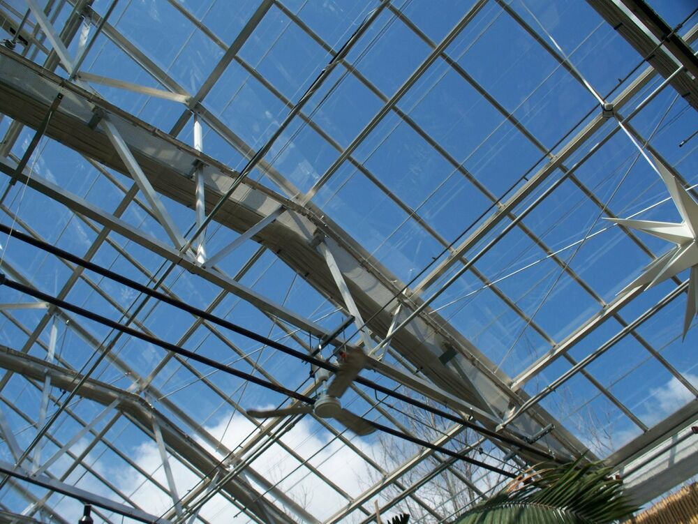 Double Strength Glass Cutting : Greenhouse tempered glass clear double strength ebay