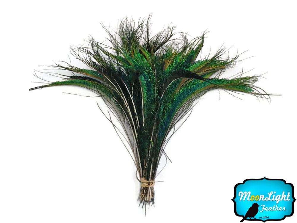 50 pieces natural peacock swords cut wholesale feathers for Where to buy craft feathers