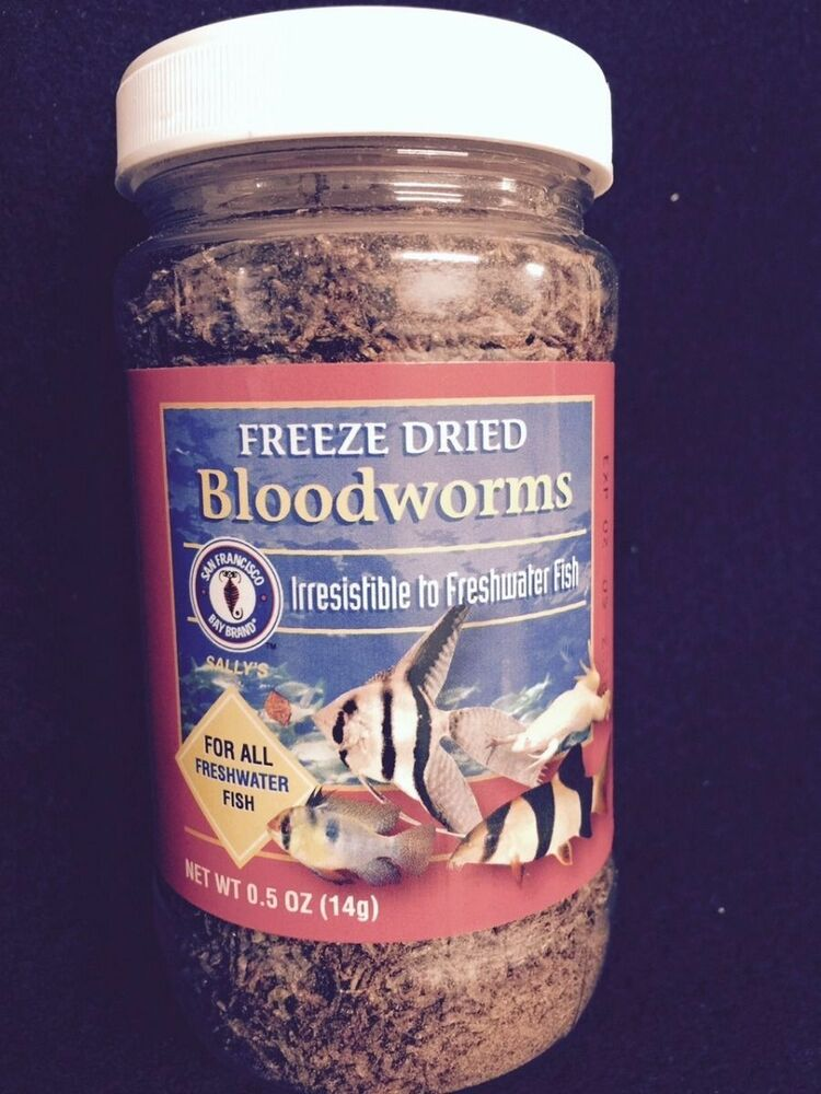 All natural freeze dried bloodworms freshwater fish food for Bloodworms fish food
