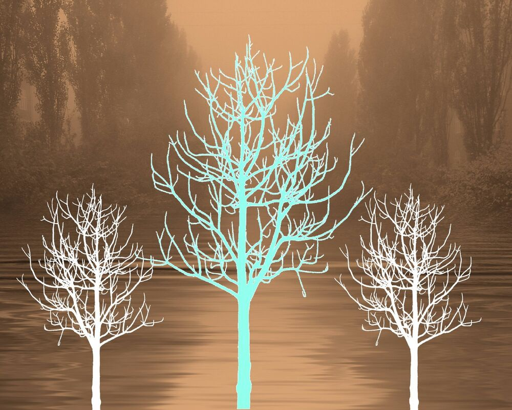 teal brown home decor trees aqua turquoise wall art matted