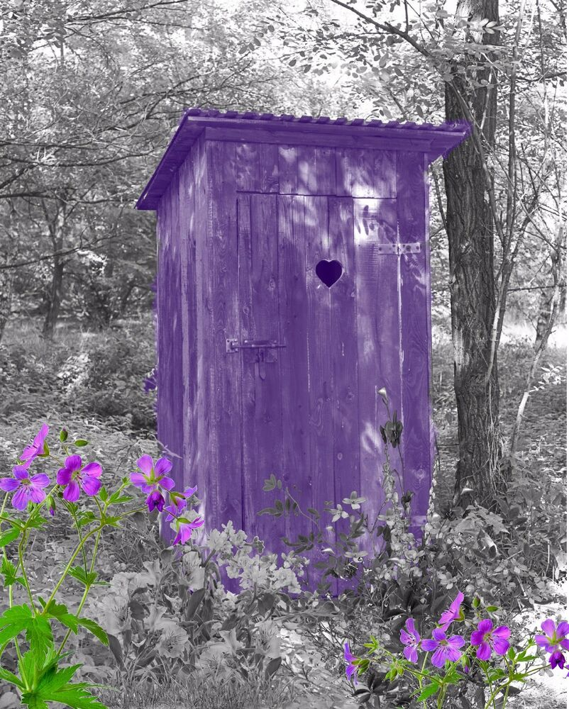 purple gray home decor wall art photo print vintage outhouse bathroom picture ebay. Black Bedroom Furniture Sets. Home Design Ideas