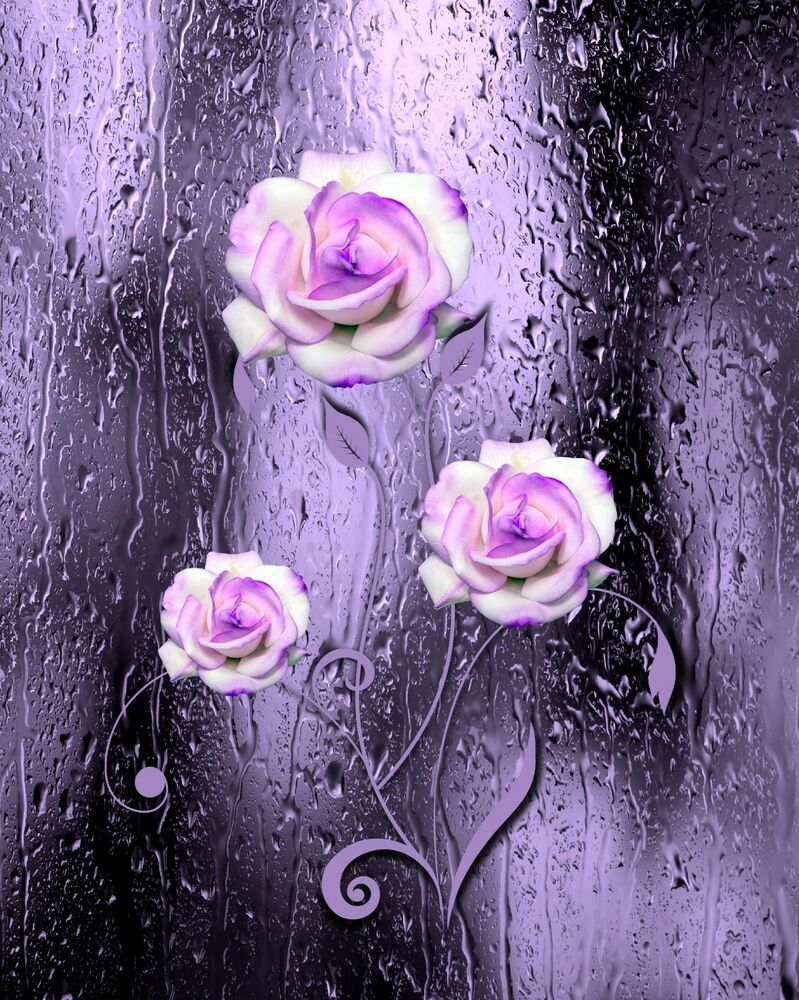 Purple Black White Wall Art Photo Print Home Bath Decor
