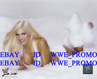 WWE Wrestling LICENSED PHOTO FILE GLOSSY PROMO DIVA 8x10 TORRIE WILSON
