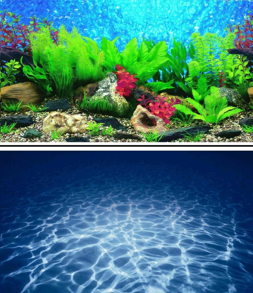 16 double sided aquarium background backdrop fish tank for Double fish tank
