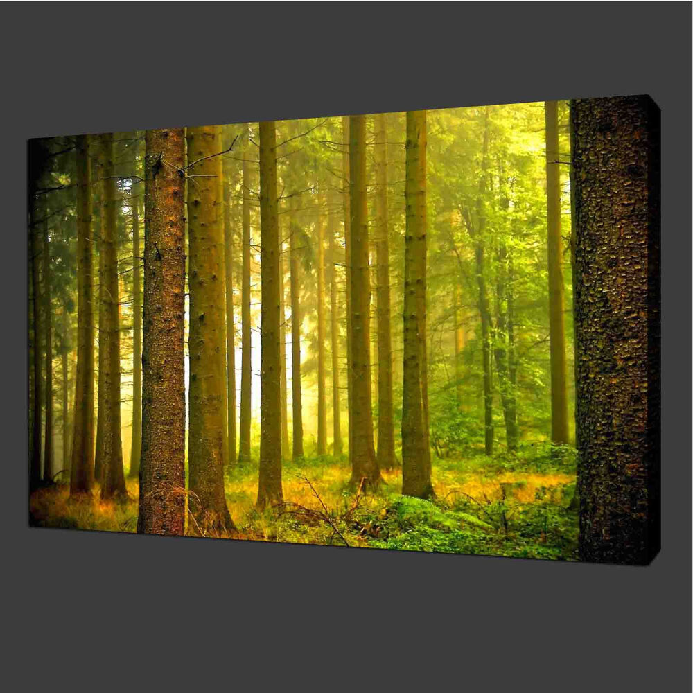 Canvas prints home decor pictures modern wall art for Wall art prints