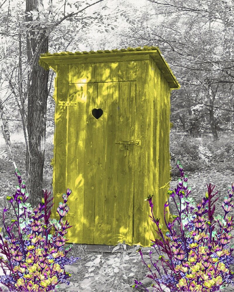Yellow Gray Wall Art Photo Print Vintage Outhouse Home