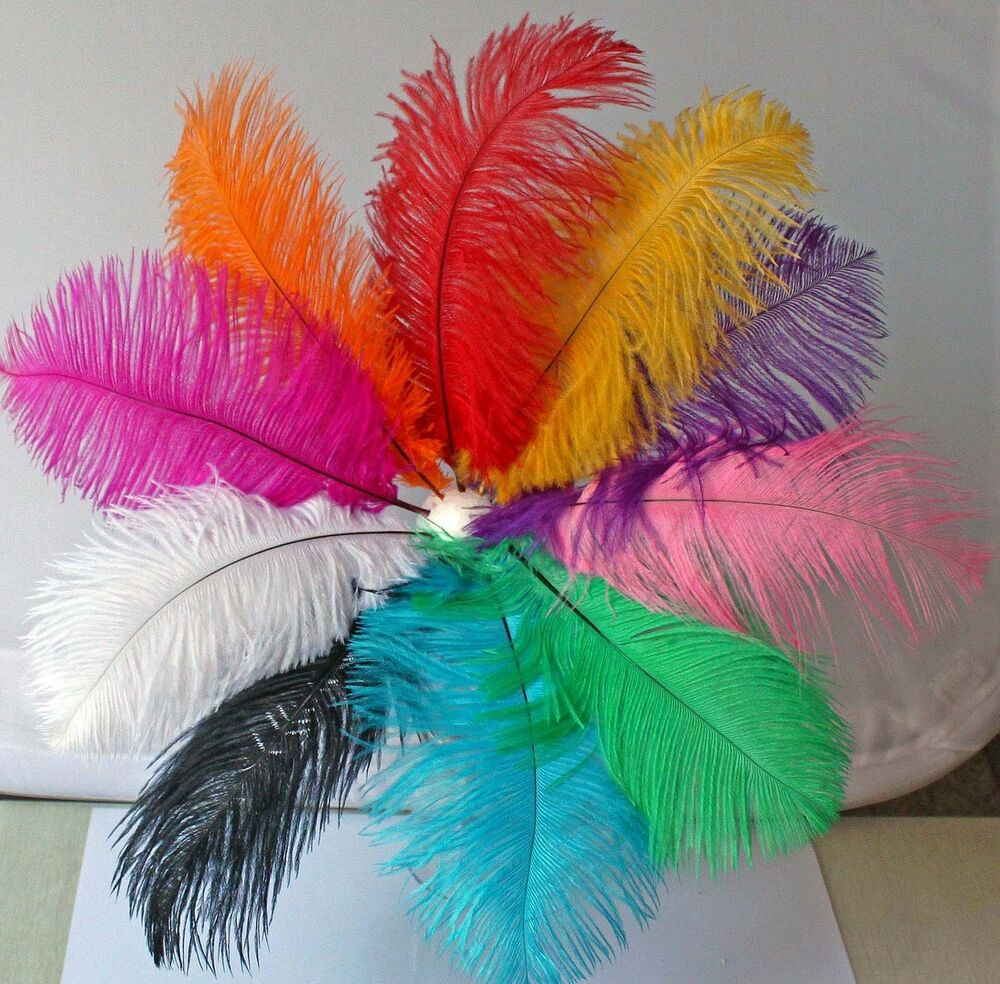 10 mixed colors 10pcs ostrich feathers craft wedding party