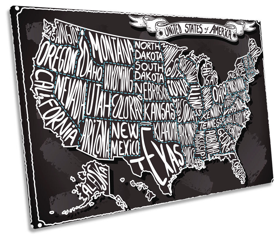 United States Of America Map SINGLE CANVAS WALL ART Framed