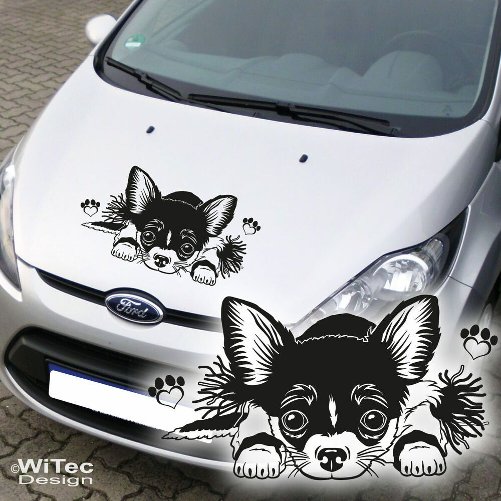 autoaufkleber chihuahua auto aufkleber motorhaube hund pfoten sticker e595 ebay. Black Bedroom Furniture Sets. Home Design Ideas