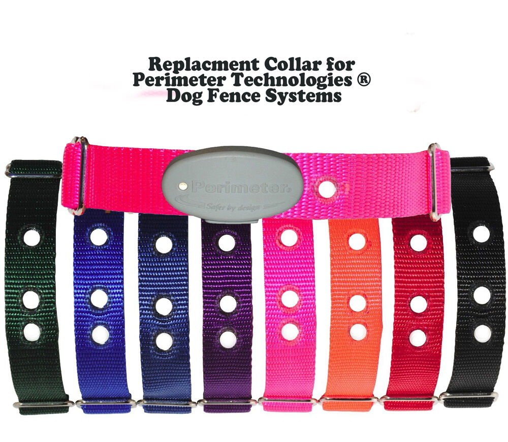 Replacment Collar For Perimeter Technologies 174 Dog Fence