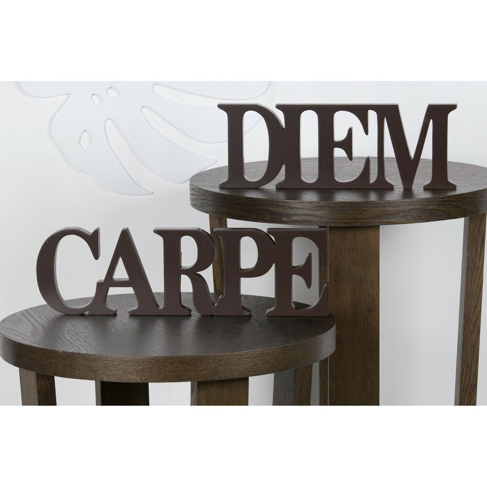 carpe diem holz braun schriftzug 2 teilig deko neu ebay. Black Bedroom Furniture Sets. Home Design Ideas