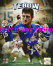 Tim Tebow University of Florida Gators Picture 8x10 College Football PHOTO NFL