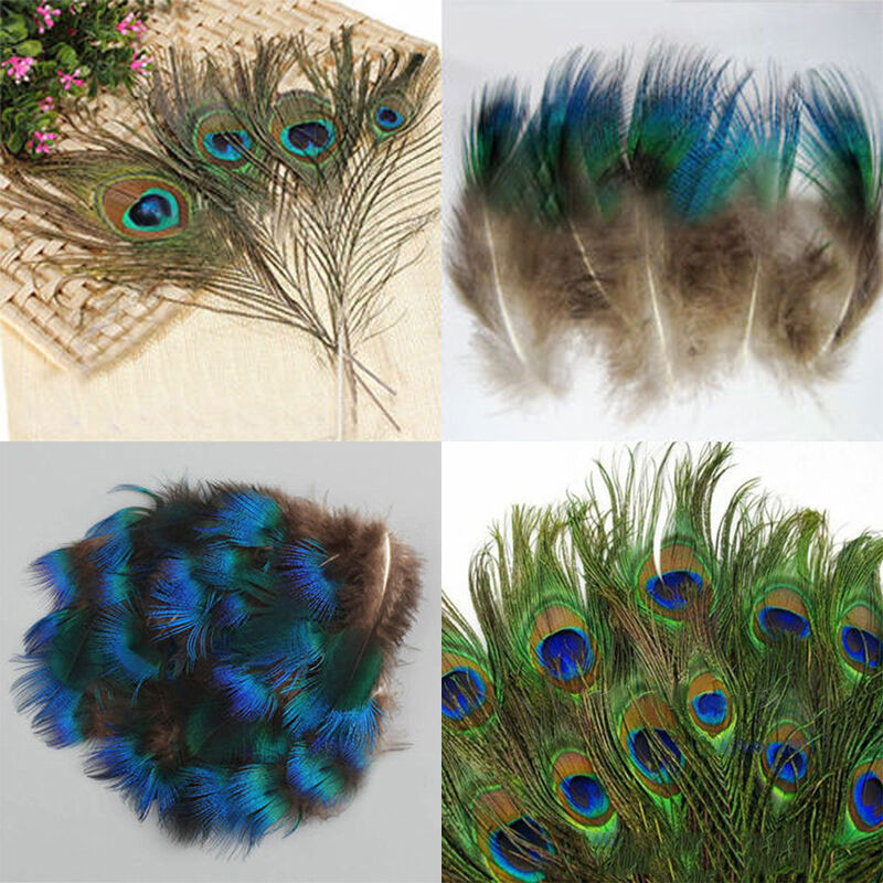Hot 10 50pcs natural artificial peacock tail eyes feathers for Where can i buy feathers for crafts