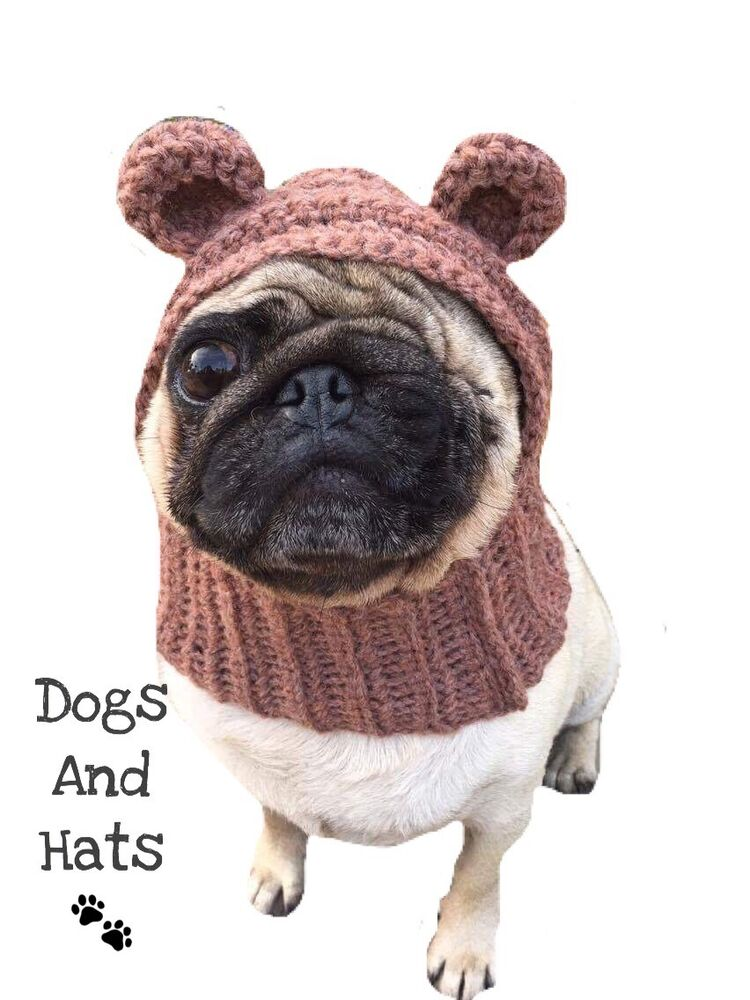 french bulldog hat the teddy bear dog hat snood for your dog french bulldog 4565