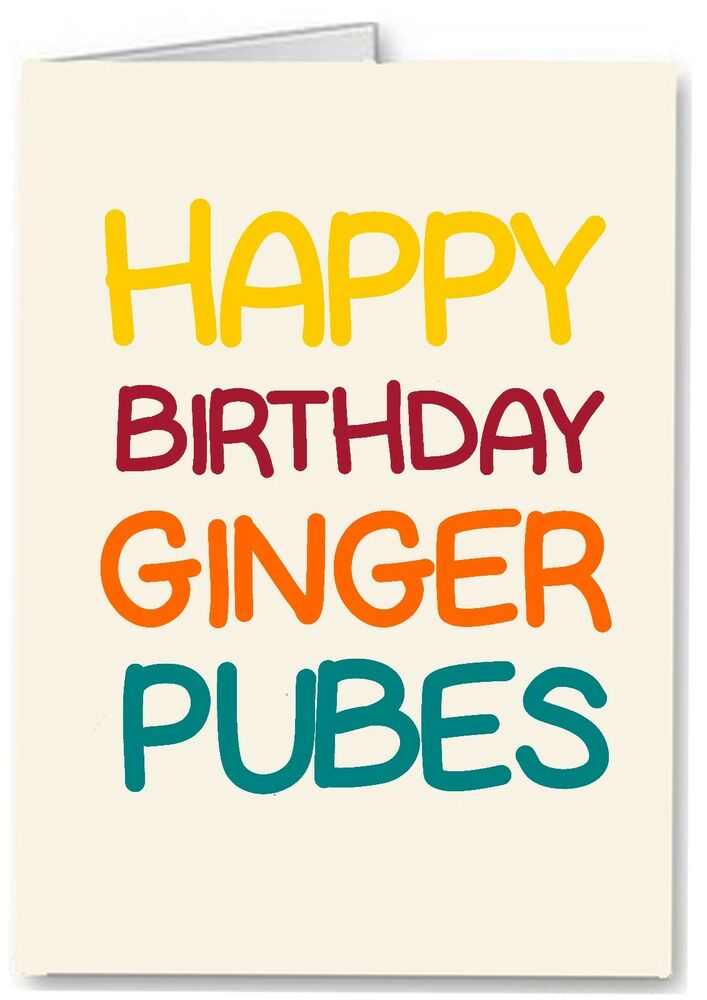 happy birthday ginger pubes  funny rude offensive joke