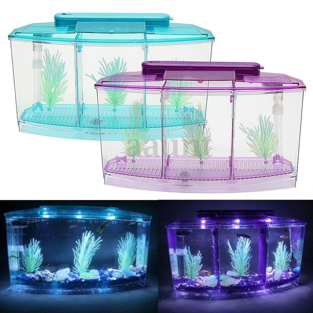 New triple cube led light betta aquarium separate spawning for Fish tanks for sale ebay