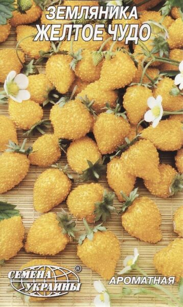 Strawberry Seeds Berries Seed Yellow miracle from Ukraine