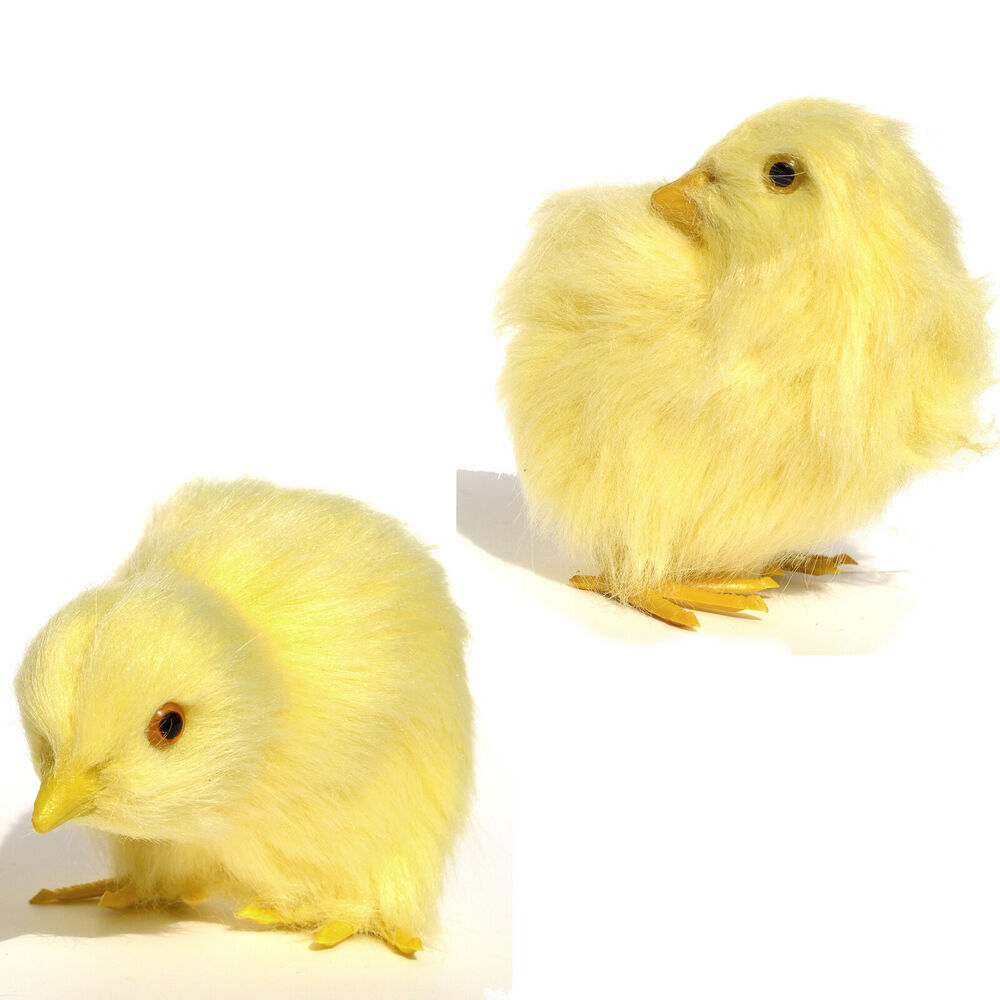 Images Of Chicken Baby
