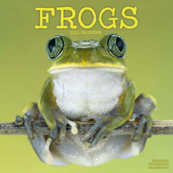 Royaume-UniFrogs 2021 Calendrier 15% OFF Multi s