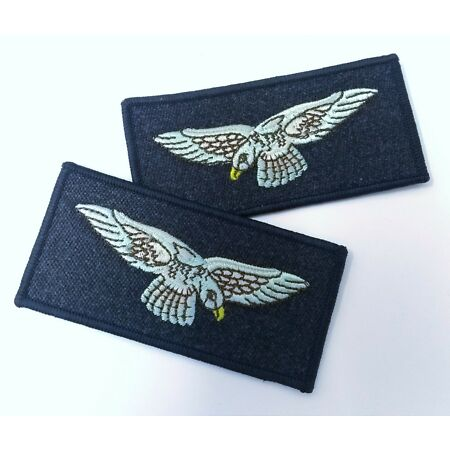img-Genuine British Royal Air Force Swooping Eagles Shoulder L & R Patches ASPS251