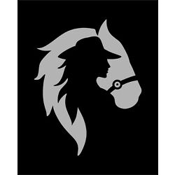 Horse Cowgirl Decal Car Truck SUV Window Bumper Wall Laptop Tablet Trailer