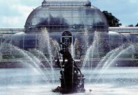 (12298) Postcard - London Kew Gardens Palm House and Hercules Achelous Fountain