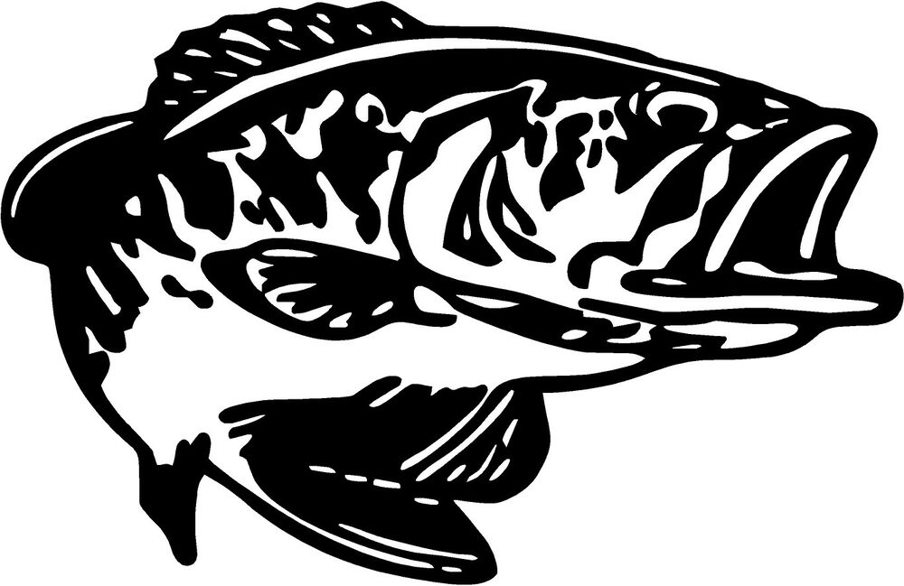 Bass catfish fishing salt kiss my sticker decal fish boat for Fishing boat decals