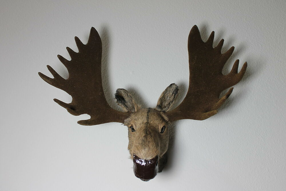 Furry Animal Moose Head Moosehead Wall Hanger Mount