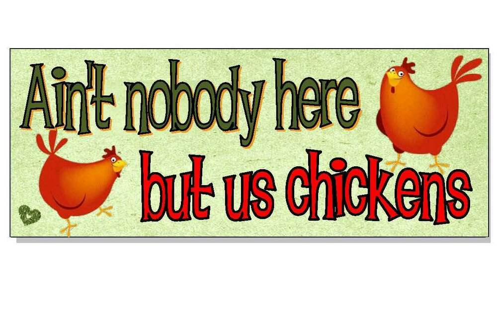 Chicken Funny Signs Quotes: FUNNY CHICKEN ACRYLIC SIGN Plaque House Bantam Run Coop