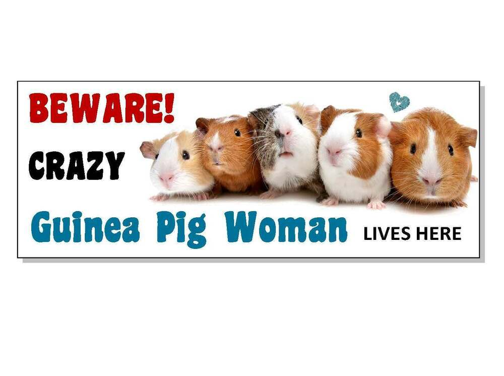 Funny Beware Guinea Pig Wood Sign Plaque Hutch Cage Run