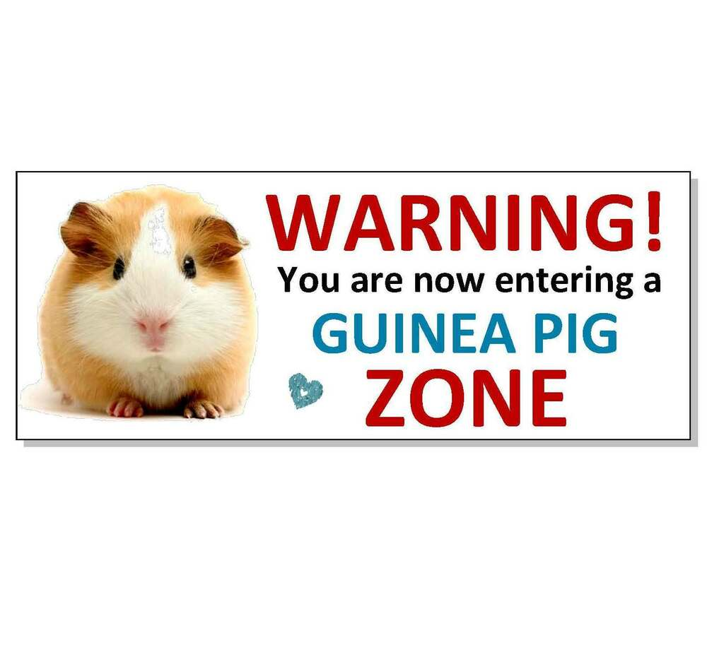 Funny Warning Guinea Pig Acrylic Sign Plaque Hutch Cage