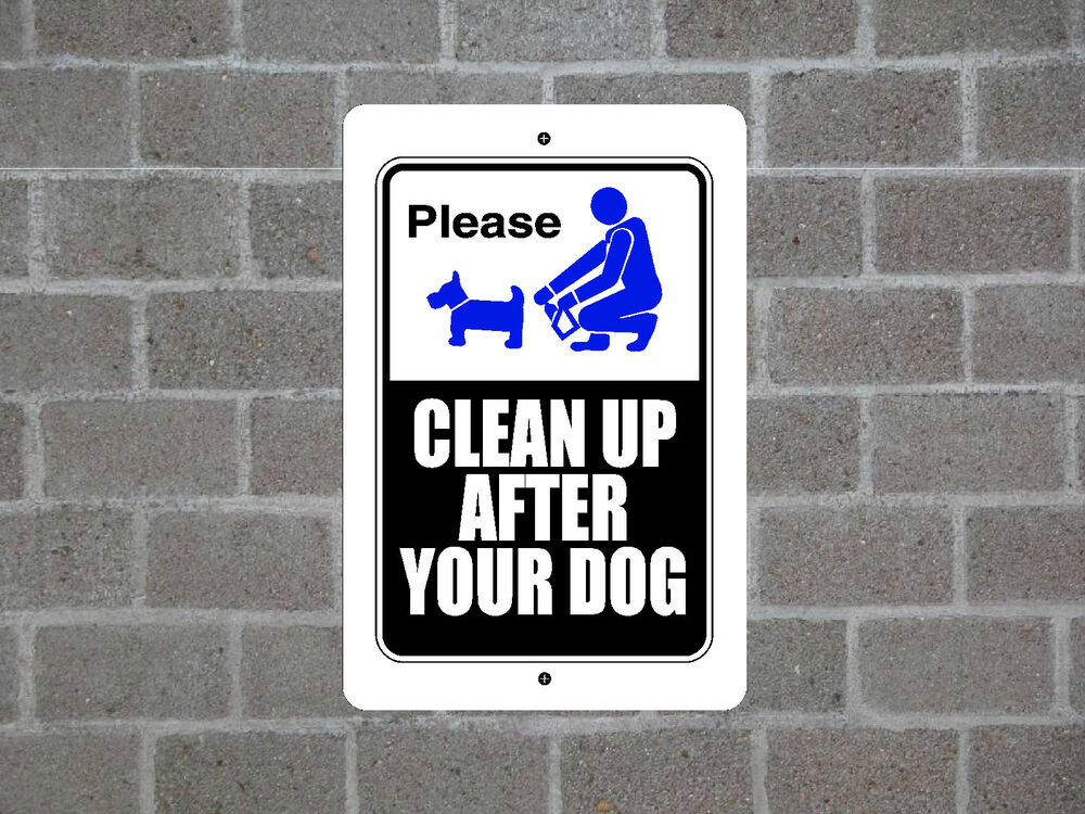 how to clear up a dog& 39