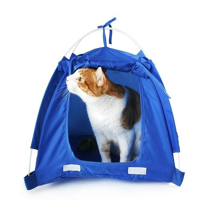 small pet kitten cat puppy dog mini nylon camp tent bed play house red blue ebay. Black Bedroom Furniture Sets. Home Design Ideas