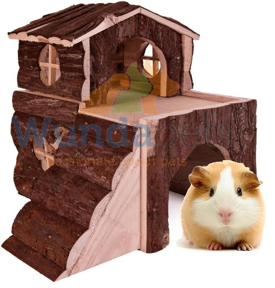 how to build a guinea pig house