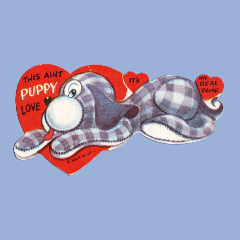 Valentine S For Dogs Toys : Vintage valentine s day card stuffed dog