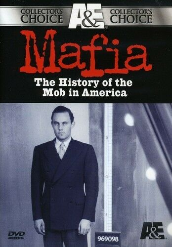 a history of the american mafia Reppetto's history of the american mafia, from its humble turn-of-the-century  beginnings in small italian neighborhoods to the 1950–1951.