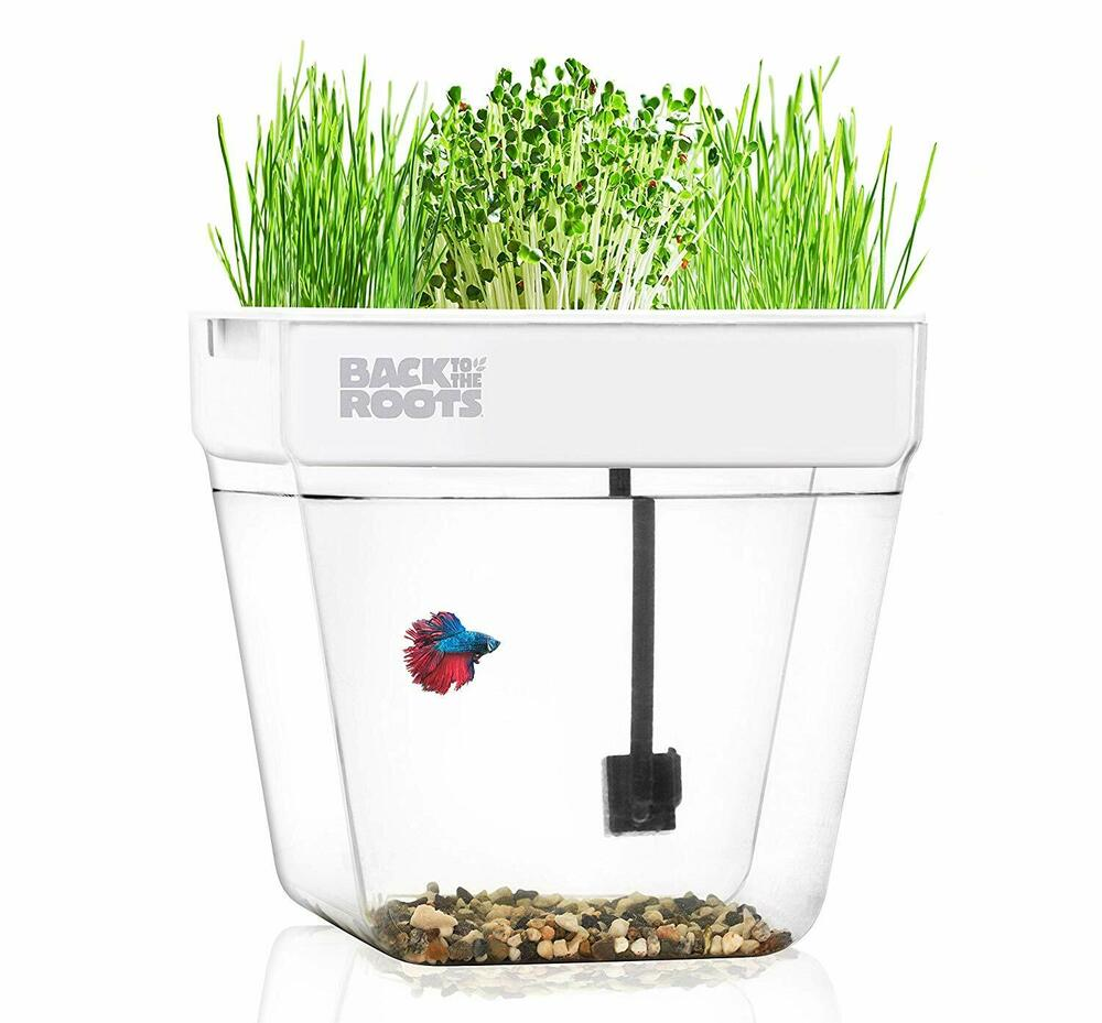 fish tank aquarium new aqua farm v2 self cleaning grows food plants betta fish 702785960387 ebay. Black Bedroom Furniture Sets. Home Design Ideas