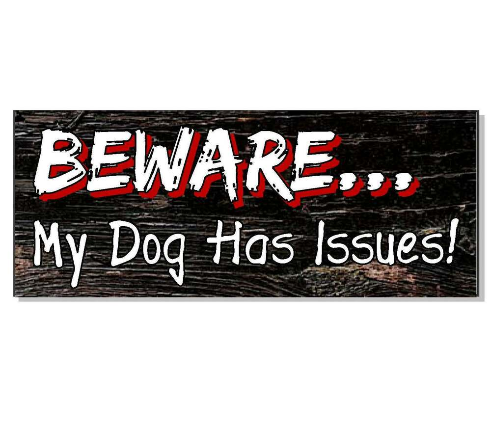 Beware My Dog Has Issues Front Door Gate Sign Plaque Gift. Erections In The Morning Dentists In Colorado. Credit Score Report For Free. Chase Credit Card Lost Fix Hail Damage On Car. Childcare Network Wilmington Nc. Share Remote Desktop Session X L Insurance. Industrial Molded Rubber San Ysidro Locksmith. Comparative Environmental Law. Email Marketing Benefits Apple Training Login