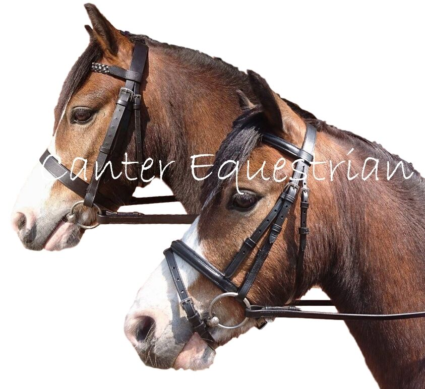 how to put reins on a bridle